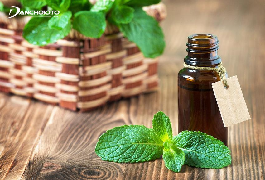 Tinh dầu bạc hà có khả năng khử mùi, thanh lọc không khí, xua đuổi côn trùng, diệt khuẩn nấm mốc