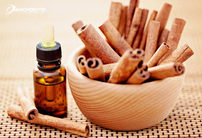 Tinh dầu quế chứa hàm lượng chất chống oxy hoá rất cao